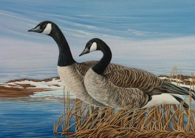 "Entry #11 – ""Arctic Wetlands"" by artist Hélène Girard."
