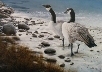 """Entry # 13 – """"Edgewater Geese"""" by artist Tennant"""