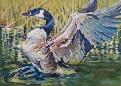 """Entry #14 – """"Canadian Goose"""" by artist McVicker"""