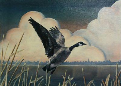 "Entry #25 – ""Canada Goose"" by artist Francev"