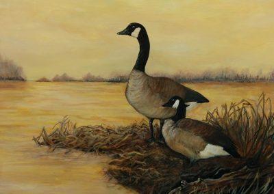 "Entry #41 – ""Couple de bernaches du Canada "" by artist Fortin"