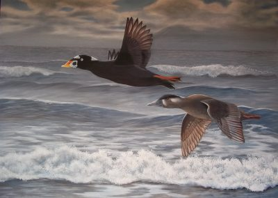 """Entry #5, """"Soaring the Surf"""" by Shelley Prior."""
