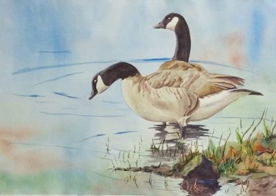 """Entry #8 – """"Catching the Edge – Canadian Geese"""" by artist Mould"""